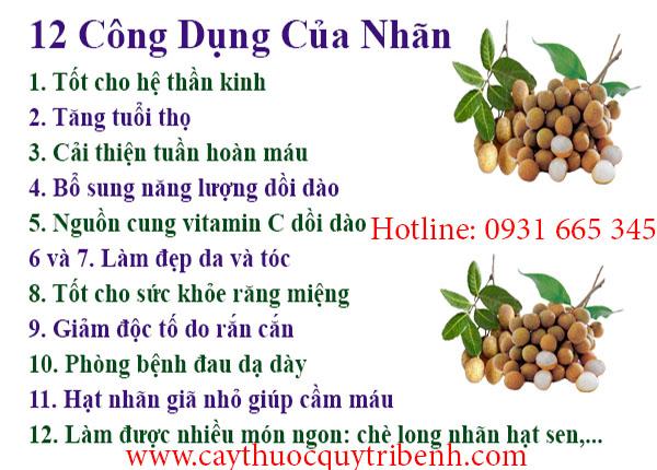 Mua-long-nhan-nhan-nhuc-o-dau-tai-tp-hcm