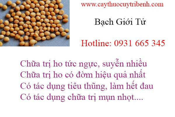 mua-bach-gioi-uy-tin-chat-luong-nhat