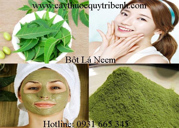 bột lá neem thảo dược thanh bình