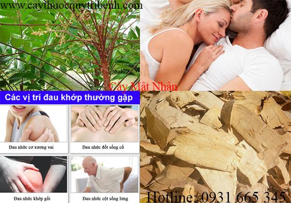mua-cay-mat-nhan-chat-luong-tai-tp-hcm