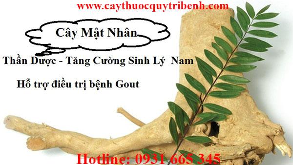 mua-cay-mat-nhan-uy-tin-tai-tp-hcm