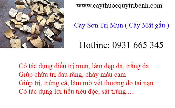 mua-cay-son-tri-mun-uy-tin-chat-luong-tai-tp-hcm