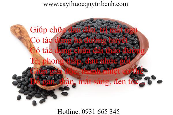 mua-dau-den-xanh-long-tai-tp-hcm-uy-tin-chat-luong-nhat