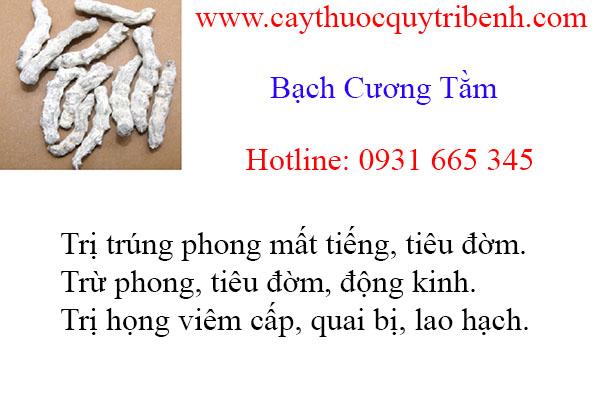 mua-bach-cuong-tam-chat-luong-tai-tp-hcm