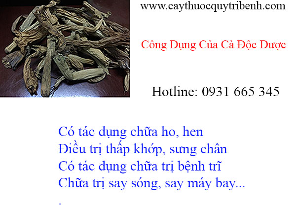 mua-ban-ca-doc-duoc-tai-tp-hcm-chat-luong