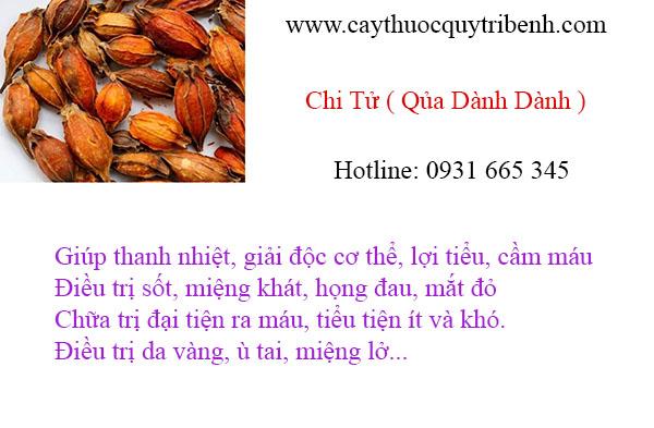 mua-chi-tu-qua-danh-danh-uy-tin-chat-luong-tai-tp-hcm