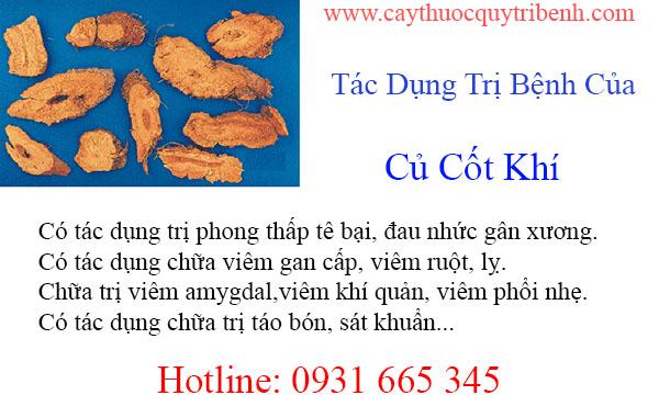 mua-cu-cot-khi-chat-luong-tai-tp-hcm