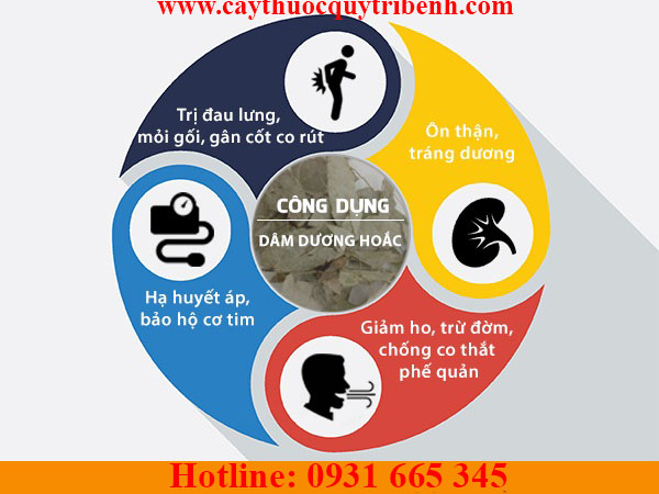 mua-dam-duong-hoac-chat-luong-tai-tp-hcm