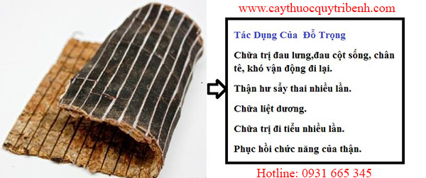 mua-do-trong-chat-luong-tai-tp-hcm