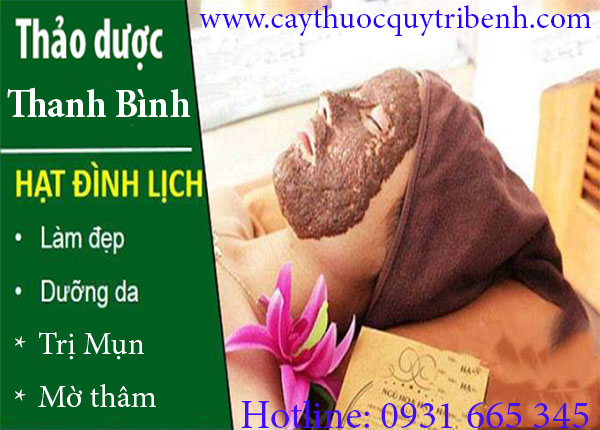 mua-hat-dinh-lich-o-dau-tai-tp-hcm-uy-tin-chat-luong