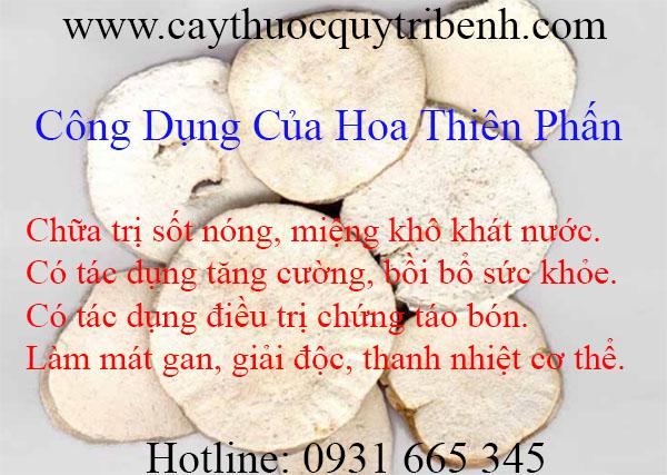 mua-hoa-thien-phan-tai-tp-hcm-uy-tin-chat-luong
