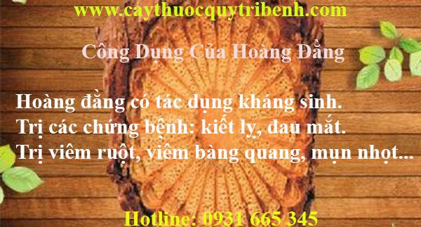 mua-hoang-dang-tai-tp-hcm-chat-luong-nhat