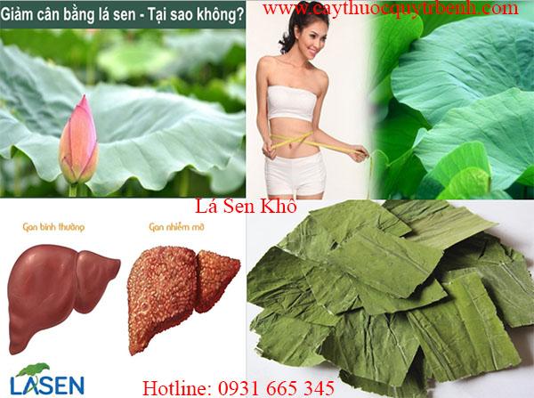 mua-la-sen-kho-chat-luong-tai-tp-hcm