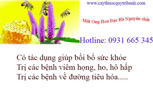 /mua-mat-ong-hoa-bac-ha-nguyen-chat-tai-tp-hcm-chat-luong-nhat