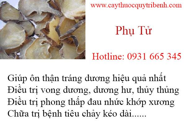 mua-phu-tu-uy-tin-chat-luong-nhat-tai-tp-hcm