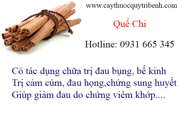 mua-que-chi-tai-tp-hcm-uy-tin-chat-luong-nhat