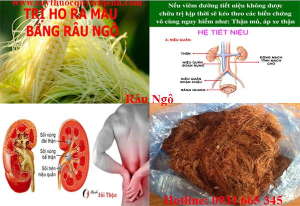 mua-rau-ngo-chat-luong-o-dau-tai-tp-hcm