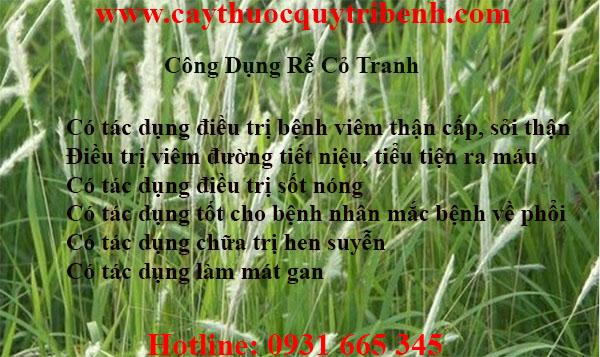 mua-re-co-tranh-chat-luong-tai-tp-hcm