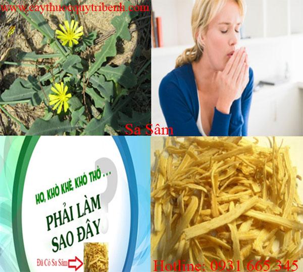 mua-sa-sam-chat-luong-tai-tp-hcm