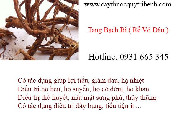 tang bạch bì (rễ vỏ dâu)