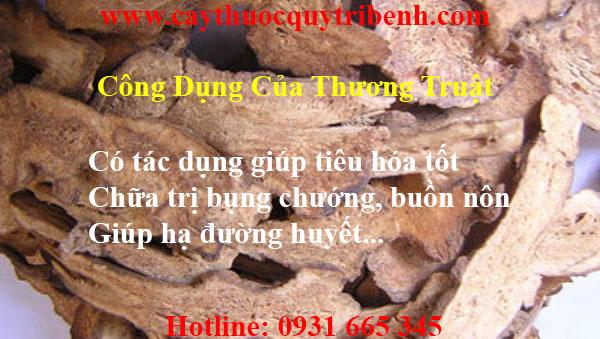 mua-thuong-truat-uy-tin-chat-luong-tai-tp-hcm