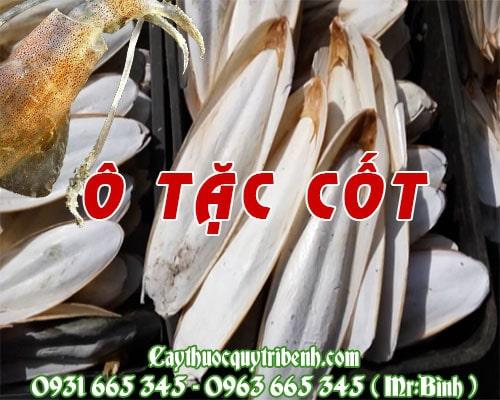 Mua bán ô tặc cốt (mai mực) tại Cần Thơ dùng để chữa các vết thương ngoài da