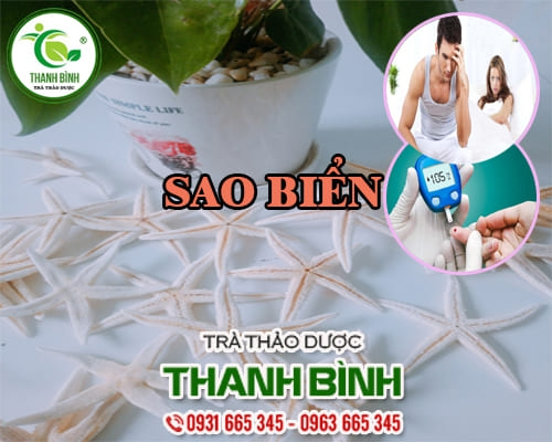 Mua bán sao biển ở quận Bình Tân giúp cải thiện trí nhớ an toàn nhất
