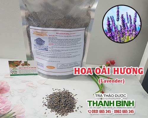 Tác dụng của hoa oải hương trong việc trị lo âu, mất ngủ hiệu quả nhất