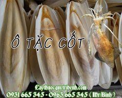 Địa chỉ bán ô tặc cốt (mai mực) chữa viêm loét dạ dày tại Hà Nội uy tín nhất