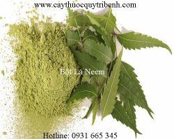 Mua bán bột lá neem chất lượng tại Đà Nẵng giúp làm sạch nhờn cho da
