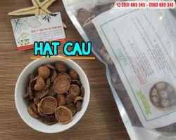 Mua bán hạt cau tại Hà Nội uy tín chất lượng tốt nhất