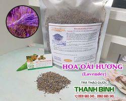 Mua bán hoa oải hương ở huyện Hóc Môn tốt cho việc chữa mùi hôi trong khách sạn