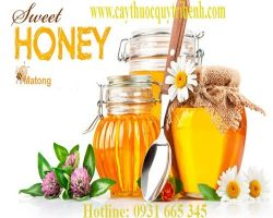 Mua bán mật ong rừng nguyên chất tại Lai Châu chữa đau dạ dày tốt nhất