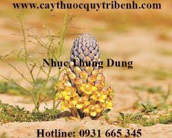 Mua bán nhục thung dung tại Ninh Thuận chữa trị liệt dương tốt nhất