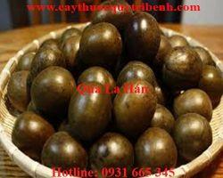 Mua bán quả la hán ở huyện Bình Chánh có tác dụng tiêu đờm tốt nhất