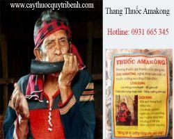 Mua bán thang thuốc Amakong tại Thái Bình trị gout hiệu quả nhất
