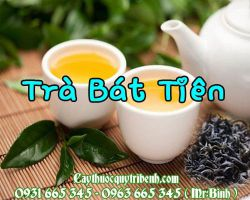 Mua bán trà bát tiên tại quận Hoàng Mai giúp phòng ngừa ung thư hiệu quả