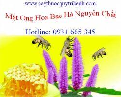 Mua mật ong hoa bạc hà nguyên chất ở đâu tại tp hcm ???
